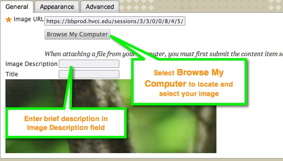 Browse Computer button and Image Description field