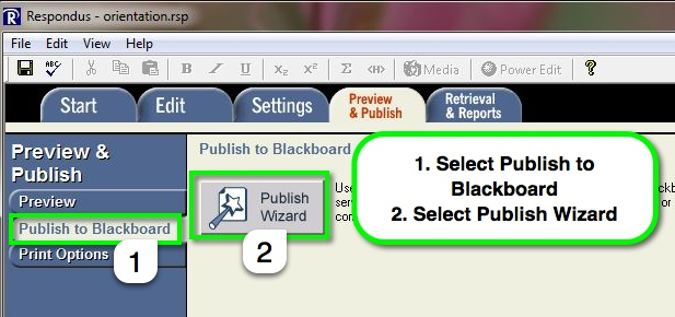 Respondus Publish to Blackboard page