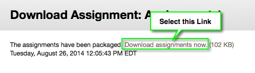Download Assignment Package